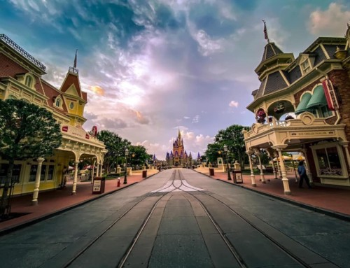 Views From Walt Disney World's Re-Opening Days