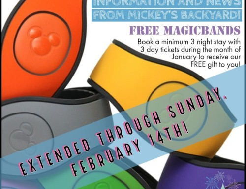 EXTENDED! Our Exclusive Gift to You: FREE Magic Bands!