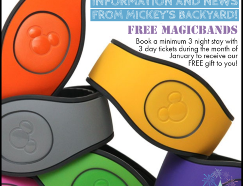 Our Exclusive Gift to You: FREE Magic Bands!